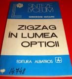 ZIG ZAG IN LUMEA OPTICII - Gheorghe Hutanu
