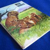 Wild Animals - carte pentru copii ilustrata (in lb. engleza) - Carte educativa