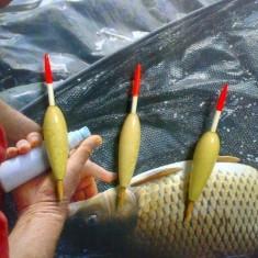 Plute pescuit:albitura(oblete), babusca, scobar - Pluta Pescuit