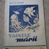Tainele marii bogorov stiinta pentru toti cartea rusa 21 carte ilustrata - Carte Biologie