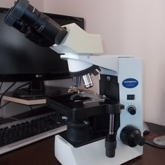 Olympus CX31 Binocular Microscope - Four Objectives - Binoclu vanatoare