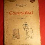 Maxim Gorki - Cocosatul - interbelica - Nuvela