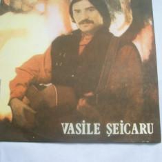 VASILE SEICARU IUBIREA NOASTRA DISC VINIL - Muzica Pop
