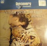 DVD DISCOVERY VIATA PRINTRE TIGRI