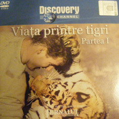 DVD DISCOVERY VIATA PRINTRE TIGRI - Film documentare discovery channel, Romana