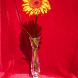 Vaza de cristal deosebita Bohemia