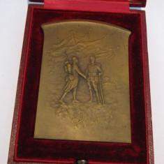 PLACHETA UNIFATA IN CUTIA ORIGINALA COOPERAREA ARMATELOR ROMANO FRANCEZE 1916 rara - Medalii Romania