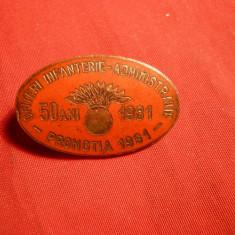 Insigna Militara Ofiteri Infanterie -promotia 1931-1981