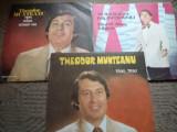 THEODOR MUNTEANU lot discuri vinyl electrecord lp muzica usoara pop slagare, VINIL