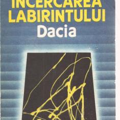 (C3570) INCERCAREA LABIRINTULUI DE MIRCEA ELIADE, EDITURA DACIA, 1990, TRADUCEREA SI NOTE DE DOINA CORNEA