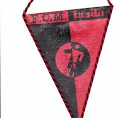 Fanion fotbal FCM RESITA