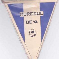 Fanion fotbal MURESUL DEVA