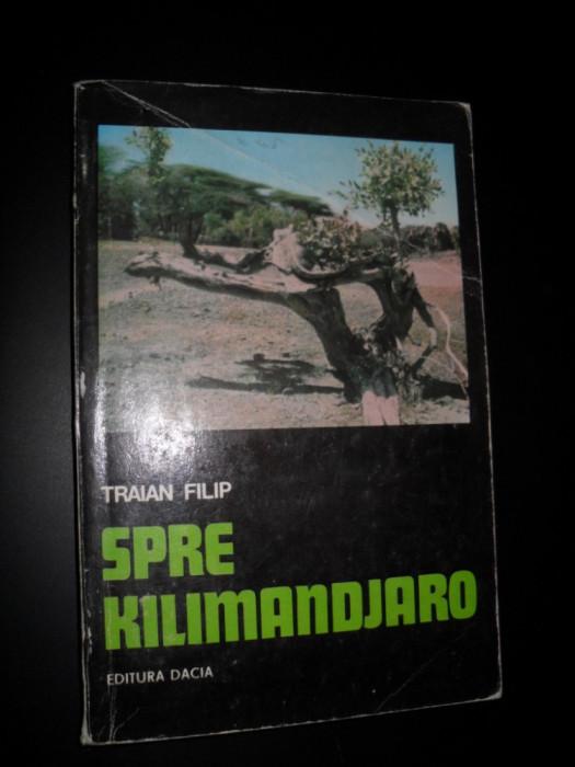 SPRE KILIMANDJARO TRAIAN FILIP