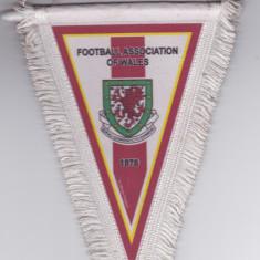 Fanion Federatia de Fotbal din TARA GALILOR - Fanion fotbal