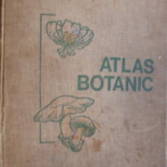 ATLAS BOTANIC - L. Popovici, C. Moruzi, I. Toma -- [ 1973, 215 p ]