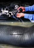 Banda autoadeziva reparatie conducte, furtune radiator intercooler
