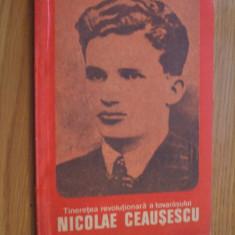 Tineretea Revolutionara a Tovarasului NICOLAE CEAUSESCU -- Olimpiu Matichescu -- [ 1981, 95 p. cu imagini in text ] - Carte Epoca de aur