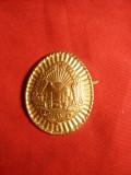 Insigna Sapca -Grad inf. -RSR