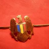 Insigna Sapca Ofiter