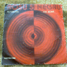 Rosu si negru alfabetul hai acasa disc vinyl single muzica pop rock liviu tudan - Muzica Rock electrecord, VINIL