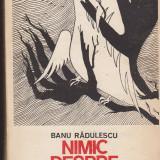 (E30) - BANU RADULESCU - NIMIC DESPRE FERICIRE - Roman, Anul publicarii: 1984
