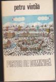 (E96) - PETRU VINTILA - PICTOR DE DUMINICA