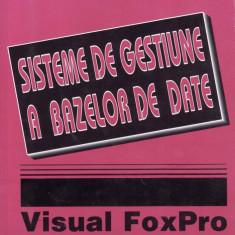 SISTEME DE GESTIUNE A BAZELOR DE DATE. VISUAL FOXPRO de TAMAS ILIE, POPA GHEORGHE si BERBEC FLORENTINA - Carte sisteme operare