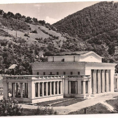 Carte postala(ilustrata)-BAIA MARE-Teatrul de vara