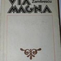 Dan Zamfirescu - Via Magna - Carte de aventura