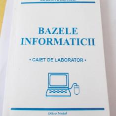 BAZELE INFORMATICII - BOGDAN COMANECI
