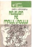 (C3871) REVELION PE MALUL LACULUI DE PETRU IDRICEANU, EDITURA SPORT-TURISM, BUCURESTI, 1981, ILUSTRATII DE TIA PELTZ