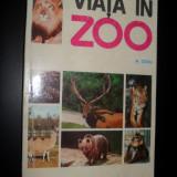Mihail Cociu - Viata in Zoo - Carti Zootehnie