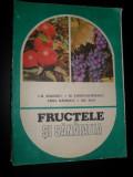 Fructele Si Sanatatea - Gh. Badescu, M. Constantinescu, Lidia Badescu, Gr.