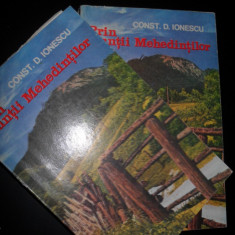 Prin Muntii Mehedintilor - C. D. Ionescu