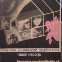 Tudor Negoita - Imprevizibilul joc - Carte de aventura