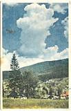 RPR,CP circulata 1954,Poiana Tapului,vedere spre Zanoaga