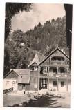 Carte postala(ilustrata)-BISTRITA -vila la Valea Vinului