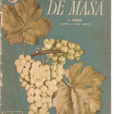 (C3831) STRUGURII DE MASA DE D. DVORNIC, SOCIETATEA PENTRU RASPANDIREA STIINTEI SI CULTURII, BUCURESTI, 1962