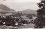 RPR,CP circulata 1966,Colibita,munti