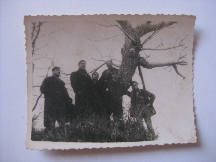 FOTOGRAFIE CU LEGIONARI IN TABARA DE LA BREAZA DIN 1936 foto mare