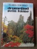 Drumetind prin lume Florea Ceausescu carte hobby turism calatorie ilustrata, Alta editura