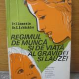 I. Lemnete, S. Schachter - Regimul de munca si de viata al gravidei si lauzei