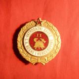 Insigna mare de Pompieri -Bosnia si Hertegovina, d= 4 cm