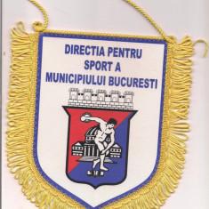 Fanion-DIRECTIA PENTRU SANATATE SI SPORT A MUNICIPIULUI BUCURESTI - Fanion fotbal