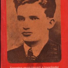 Olimpiu Matichescu-Tineretea revolutionara a tovarasului Nicolae Ceausescu - Carte Epoca de aur Altele