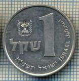3502  MONEDA  - ISRAEL  - 1 SHEQEL  - anul 1981 ? -starea care se vede