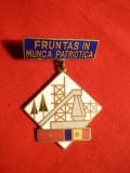 Insigna -Titlu -Fruntas in Munca Patriotica, Romania de la 1950
