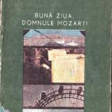 BUNA ZIUA, DOMNULE MOZART! de LUCIAN CURSARU - Nuvela
