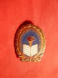 Insigna -Titlu -Evidentiat in Munca Culturala de Masa ,anii '50-FF.Rara !
