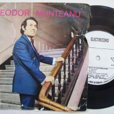 Disc vinil ( vinyl , pick-up ) THEODOR MUNTEANU - Orice om se-ndragosteste/Prietenia/Visul meu din nou te cheama/Uneori (format mic - 45 - EDC 10.391)